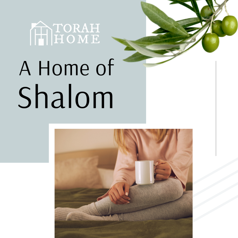 A Torah Home Is a Home with Shalom (Episode 8)